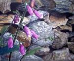 Obras de arte: Europa : España : Galicia_La_Coruña : Coruna : En la ladera