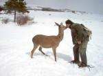 Obras de arte: Europa : España : Cantabria : Santander : Amor de hombre,amor animal