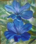 Obras de arte: America : Argentina : Buenos_Aires : Ciudad_de_Buenos_Aires : flores azules