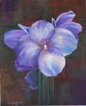 Obras de arte: America : Argentina : Buenos_Aires : Capital_Federal : Flor Azul Lila