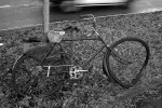 Obras de arte: Europa : España : Catalunya_Barcelona : BCN : retrato de una bicicleta3