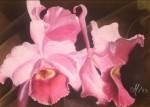 Obras de arte: Europa : Italia : Emilia-Romagna : Ferrara : Orquidea - Orchidea