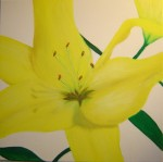 Obras de arte: Europa : Reino_Unido : Devon : Torquay : Yellow lily