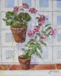 Obras de arte: Europa : Espa�a : Andaluc�a_Sevilla : paso_2 : Jardin