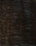 Obras de arte: America : Argentina : Buenos_Aires : Vicente_Lopez : neo- tecnológico tango 03