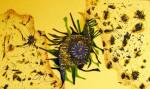 Obras de arte: Europa : España : Extremadura_Badajoz : badajoz_ciudad : Abstracción con Artistas Alegres 3.Miradas