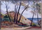 Obras de arte: Europa : España : Comunidad_Valenciana_Alicante : muro-alcoy : pins al mar