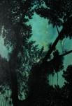 Obras de arte: America : Panamá : Panama-region : BellaVista : bosque nuboso