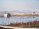 Obras de arte: Europa : España : Valencia : valencia_ciudad : campos de arroz de Catarroja