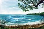 Obras de arte: America : Panamá : Panama-region : BellaVista : boca del drago