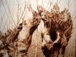 Obras de arte: Europa : España : Madrid : alcala_de_henares : Paisaje de Galápagos (detalle)