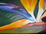 Obras de arte: America : Colombia : Santander_colombia : Bucaramanga : heliconia