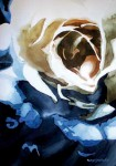 Obras de arte: America : Chile : Tarapaca : Arica : Rosa Nocturna