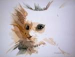 Obras de arte: America : Chile : Tarapaca : Arica : Gato Blanco