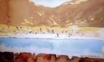 Obras de arte: America : Chile : Tarapaca : Arica : Parinas al vuelo