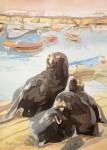 Obras de arte: America : Chile : Tarapaca : Arica : Lobos Marinos en Muelle de Iquique
