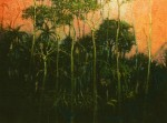 Obras de arte: America : Panamá : Panama-region :  : Darien