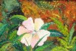 Obras de arte: America : Colombia : Santander_colombia : Bucaramanga : Serie Flores