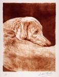 Obras de arte: Europa : España : Melilla : Melilla_ciudad : perro