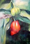 Obras de arte: America : Colombia : Bolivar : cartagenadeindias : Frutos de la mano