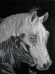 Obras de arte: America : Colombia : Boyaca : duitama : Centauros indomables.