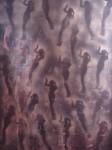 Obras de arte: Europa : España : Catalunya_Barcelona : Barcelona : contra la pared