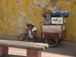 Obras de arte: America : Argentina : Buenos_Aires : Ciudad_de_Buenos_Aires : vendedor ambulante