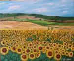 Obras de arte: Europa : España : Castilla_y_León_Palencia : palencia : Campo de girasoles