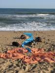 Obras de arte: Europa : España : Andalucía_Málaga : malaga : El regalo de la vida