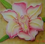 Obras de arte: America : México : Mexico_Distrito-Federal : Coyoacan :  Flor de Orquidea