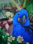Obras de arte: America : Bolivia : Santa_Cruz-Bolivia : santa_cruz_de_la_sierra : jacinto