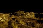 Obras de arte: Europa : España : Murcia : cartagena : Nocturna - 2
