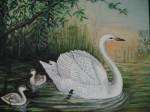 Obras de arte: Europa : España : Catalunya_Barcelona : Barcelona : Cisnes en lago