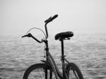 Obras de arte: America : Uruguay : Montevideo : Montevideo_ciudad : Bicicleta y Mar
