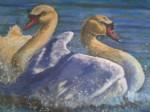 Obras de arte: Europa : España : Castilla_y_León_Valladolid : Valladolid_ciudad. : cisnes en el lago