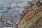 Obras de arte: Europa : España : Canarias_Santa_Cruz_de_Tenerife : Santa_Cruz_Tenerife_ciudad : CADENAS EN EL AGUA
