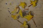 Obras de arte: America : Argentina : Buenos_Aires : Cuidad_Aut._de_Buenos_Aires : Movimiento de las hojas sobre mesa escolar