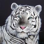 Obras de arte: America : Brasil : Sao_Paulo : Sao_Paulo_ciudad : tigre branco