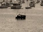 Obras de arte: America : Uruguay : Montevideo : Montevideo_ciudad : Aparte
