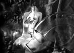 Obras de arte: America : Argentina : Neuquen : neuquen_argentina : el velo de la percepciòn