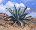 Obras de arte: America : México : Mexico_Distrito-Federal : iztapalapa : Magueyes 1