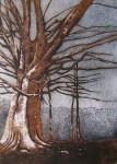 Obras de arte: America : Chile : Valparaiso : viña_del_mar : Fortaleza