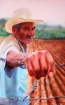Obras de arte: America : M�xico : Oaxaca : oaxaca_centro : zurcos, de la serie, maiz, sangre del pais