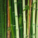 Obras de arte: America : Chile : Bio-Bio : Concepción : bambú I