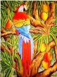 Obras de arte: America : Venezuela : Miranda : Caracas_ciudad : Guacamaya y Mangos