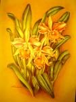 Obras de arte: America : Venezuela : Miranda : Caracas_ciudad : Orquídeas
