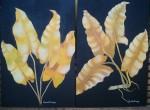 Obras de arte: America : Argentina : Entre_Rios : Paraná : hojas secas