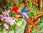 Obras de arte: America : Venezuela : Miranda : Caracas_ciudad : Guacamayo y Orqu�deas