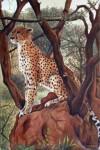 Obras de arte: America : Perú : Callao : callao-bellavista : leopardo africano