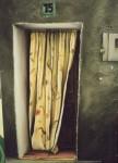 Obras de arte: Europa : España : Euskadi_Bizkaia : Dima : cortina cirbonera
